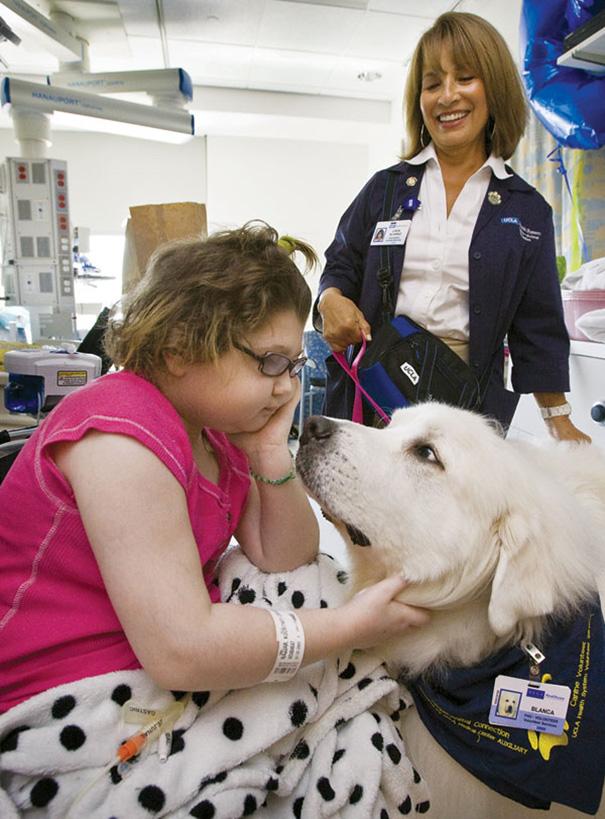 mascotas-visita-pacientes-enfermos-hospital-juravinski-canada-2